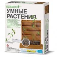 4m Умные растения